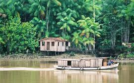 Lendas do Amazonas | Lendas e mitos do Amazonas